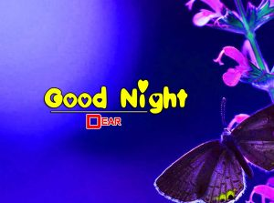 Good Night Images For Friends Pics