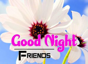 Good Night Images For Friends Pics Free