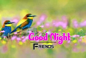 Good Night Images For Friends Pics Hd