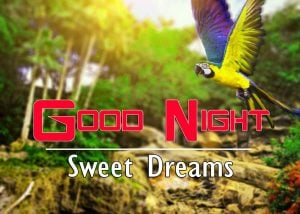 Good Night Images For Friends Pics Images