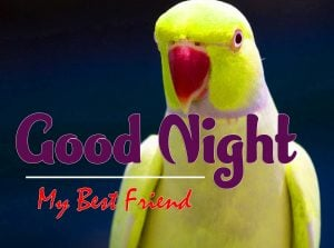 Good Night Images For Friends Pictures