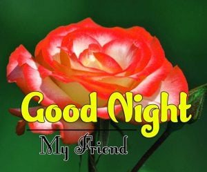 Good Night Images For Friends Pictures Free