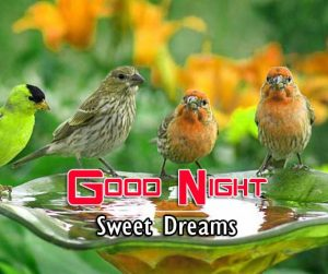 Good Night Images For Friends Pictures HD