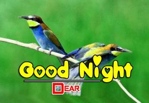Good Night Images For Friends Pictures Photo