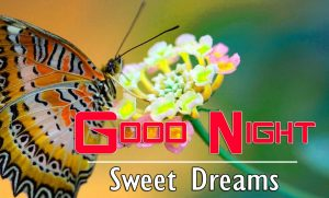 Good Night Images For Friends Wallapper Pics
