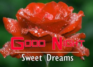 Good Night Images For Friends Wallpaper Free
