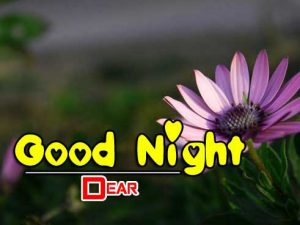 Good Night Images For Friends Wallpaper Photo