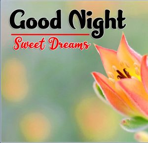 Good Night Tuesday Photo Download