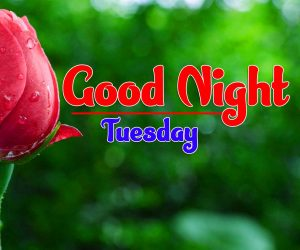 Good Night Tuesday Photo New Download