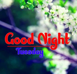 Good Night Tuesday Pics Download