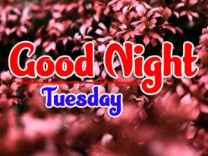 Good Night Tuesday Pics Download free