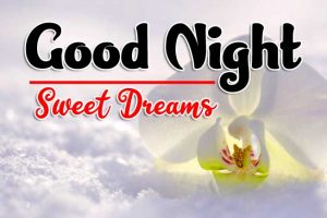 Good Night Tuesday Pictures Free New Download