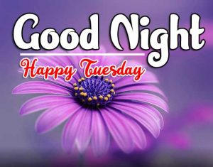 Good Night Tuesday Wallpaper pics