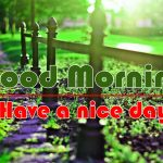 HD Best Good Morning Images Pics