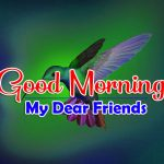HD Best Good Morning Photo Images