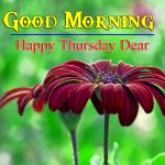 HD Best Thursday Good Morning Images Free
