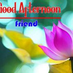 HD Good Afternoon Free Images