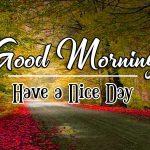 HD Good Morning Photo Free Wallpaper