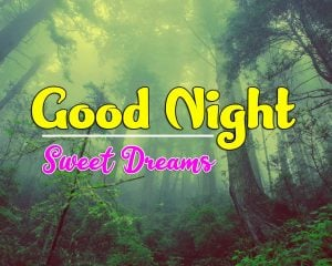 HD Good Night Friday Download