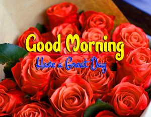 HD Latest Good Morning For Facebook Download HD