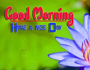 HD New Good Morning For Whatsapp