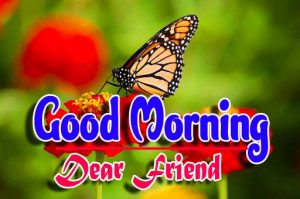 Hd Best Good Morning For Whatsapp Pics