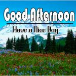 Hd Free Download Good Afternoon Pics