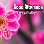 Hd Free Download Images Good Afternoon pics