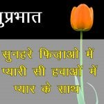 Hindi Quotes Good Morning Pics Pictures HD
