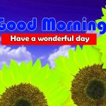 Images Cute Sunflower Good Morning