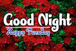 Latest Free Good Night Tuesday Images