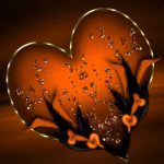 Latest Free Heart Whatsapp DP Profile Images Pics Download