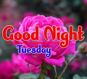 Latest Free New Good Night Tuesday Pics Images Download