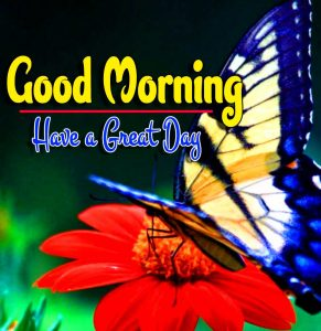 Latest Good Morning For Facebook