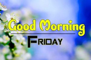 Latest Good Morning Friday Photo