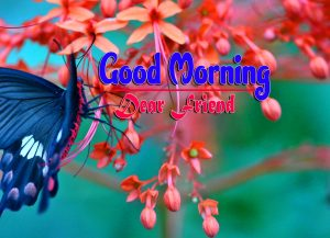 Latest Good Morning Images Hd
