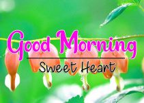 Latest Good Morning Images Pictures