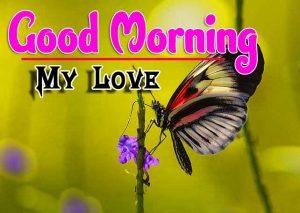 Latest Good Morning Photo Free