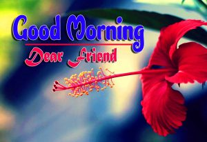 Latest Good Morning Photo Hd