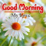 Latest Good Morning Pics