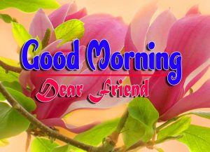 Latest Good Morning Pics Download