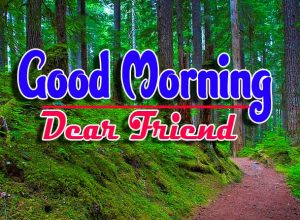 Latest Good Morning Pics For Friends