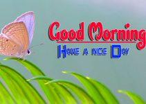 Latest Good Morning Pics Wallpaper