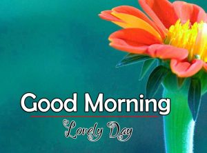 Latest Good Morning Pictures Images