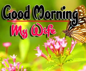 Latest Good Morning Pictures Photo