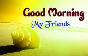 Latest Good Morning Saturday Images Hd