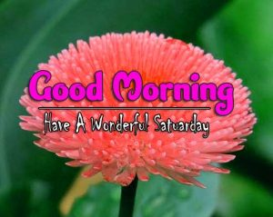 Latest Good Morning Saturday Pictures Hd