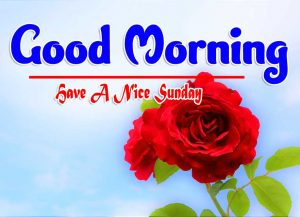 Latest Good Morning Sunday Download Pics