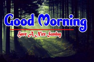 Latest Good Morning Sunday Pics Free Download