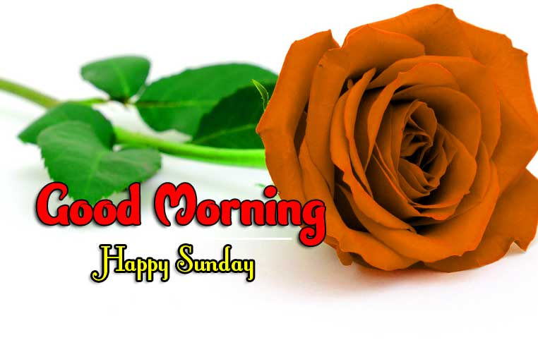 Latest Good Morning Sunday Pics Images